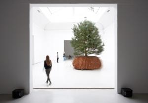 Biennale di Venezia - France, Celeste Boursier-Mougenot